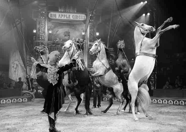 big apple circus.jpg