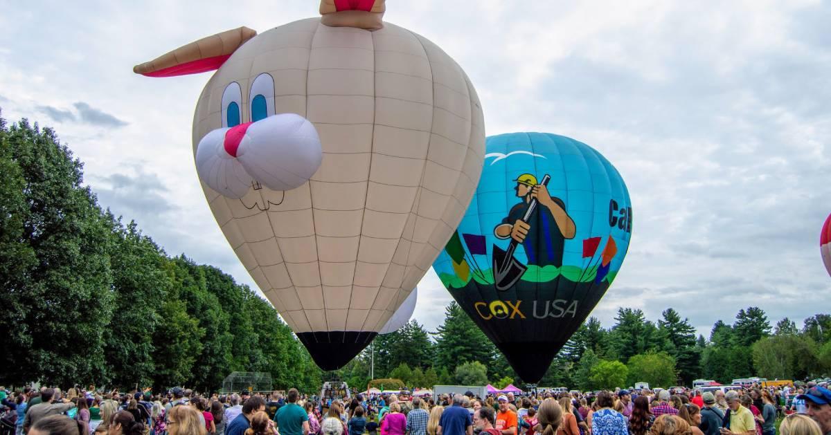 hot air balloons, including a bunny