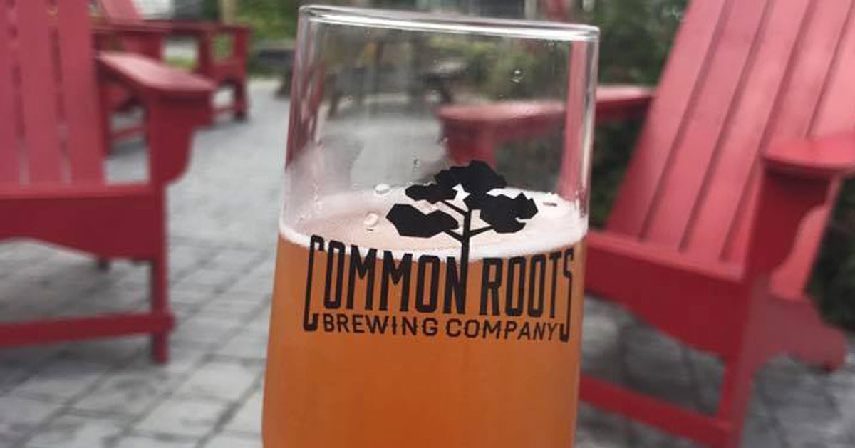 Common Roots Beer glass on deck