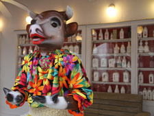 cow wearing colorful top at UpRiver Cafe
