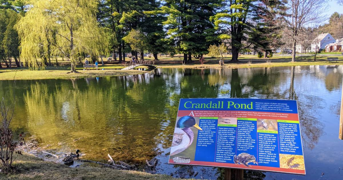 Crandall Pond sign in front of pond