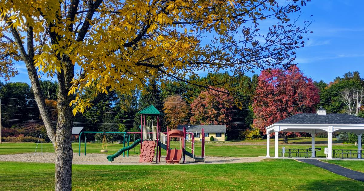 playground and trees in the fall
