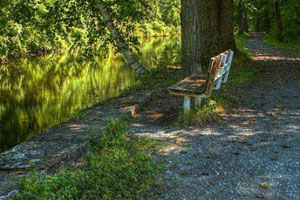 feeder canal trail bench