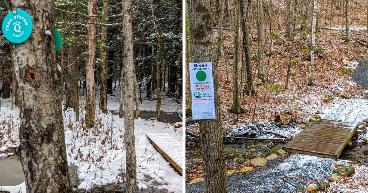 split image with walking trails in woods in winter on each side