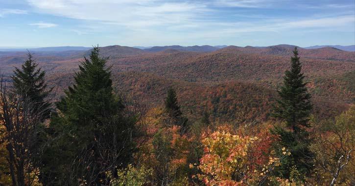 hadley mountain in fall