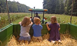 Children on a Hayride