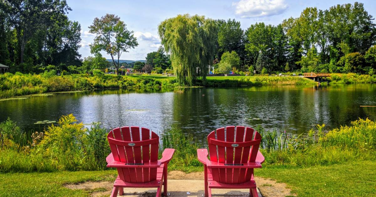 Adirondack chairs in front of a pond