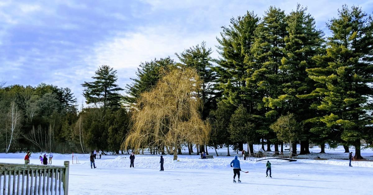 people ice skating on a pond