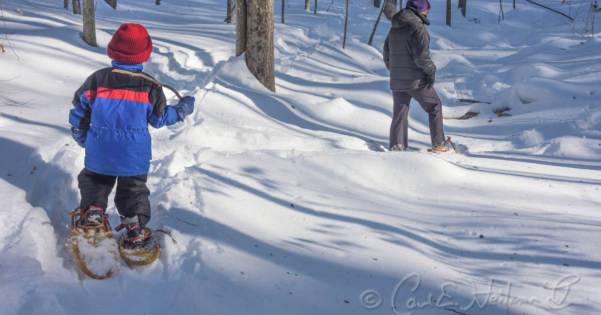 kid and parent snowshoeing in woods