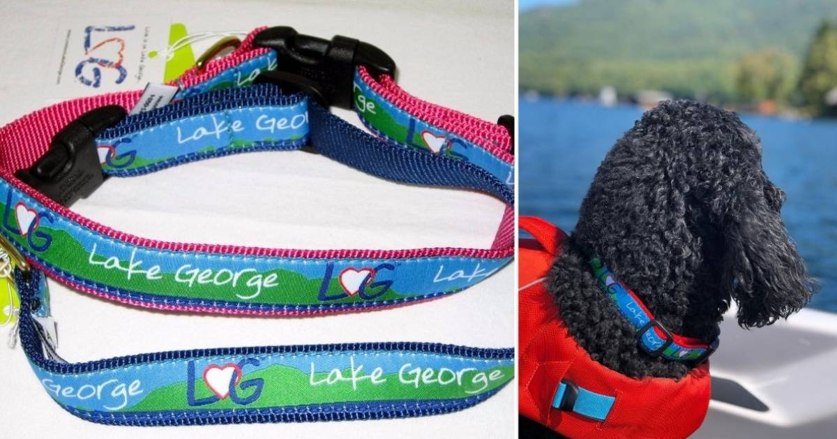 lake george dog collar and dog