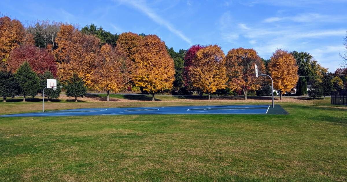 trees with fall foliage and basketball court on field
