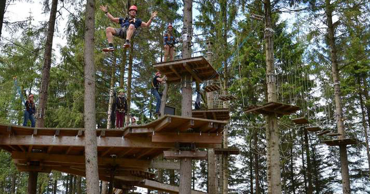 a tree top adventure course