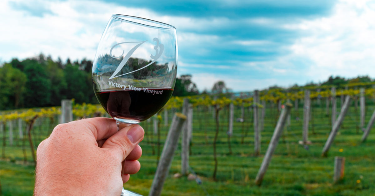 person holding victory view vineyard glass of red wine in front of vineyard
