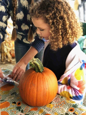 a child decorating a pumpkin at the adirondack wool and arts festival