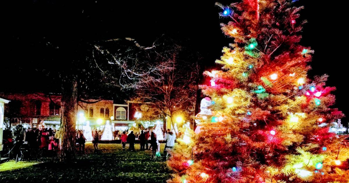 Christmas tree outdoors with colored lights in foreground, people at event in the background