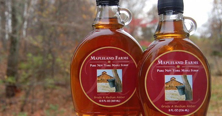 two containers of maple syrup against a backdrop of woods in the fall