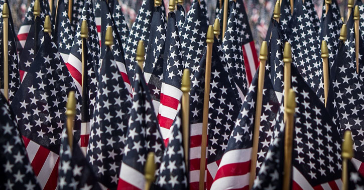 a cluster of American flags