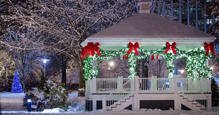 a gazebo decorated with holiday lights