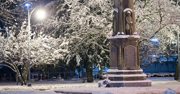 historic statue near snow