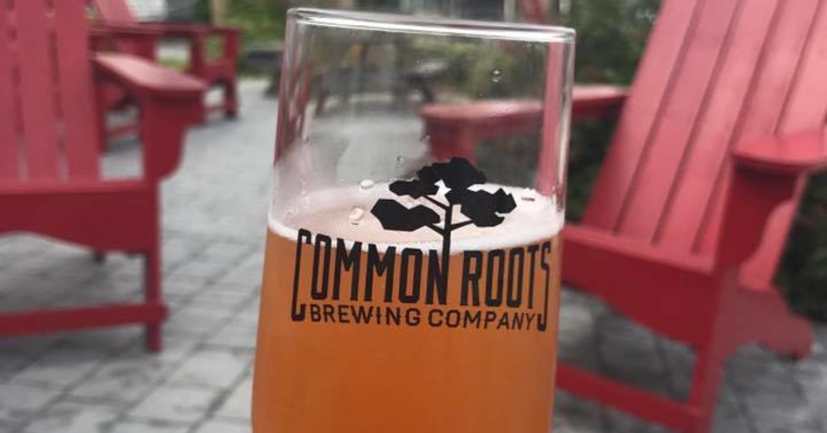 glass of beer from common roots