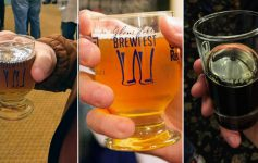 three part image of beer samples