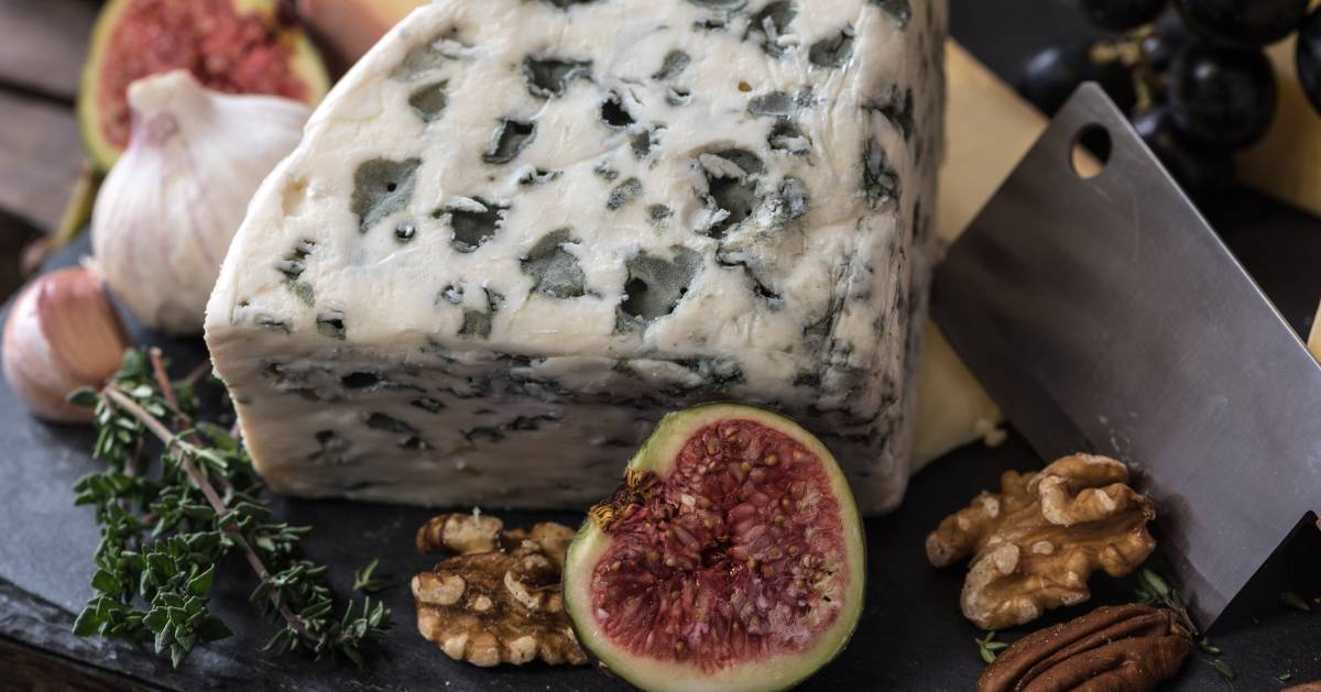 cheese wheel, nuts, fig