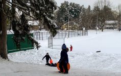 kids on sledding hill in park