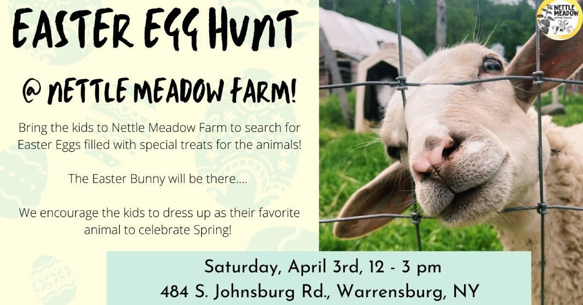 egg hunt event poster