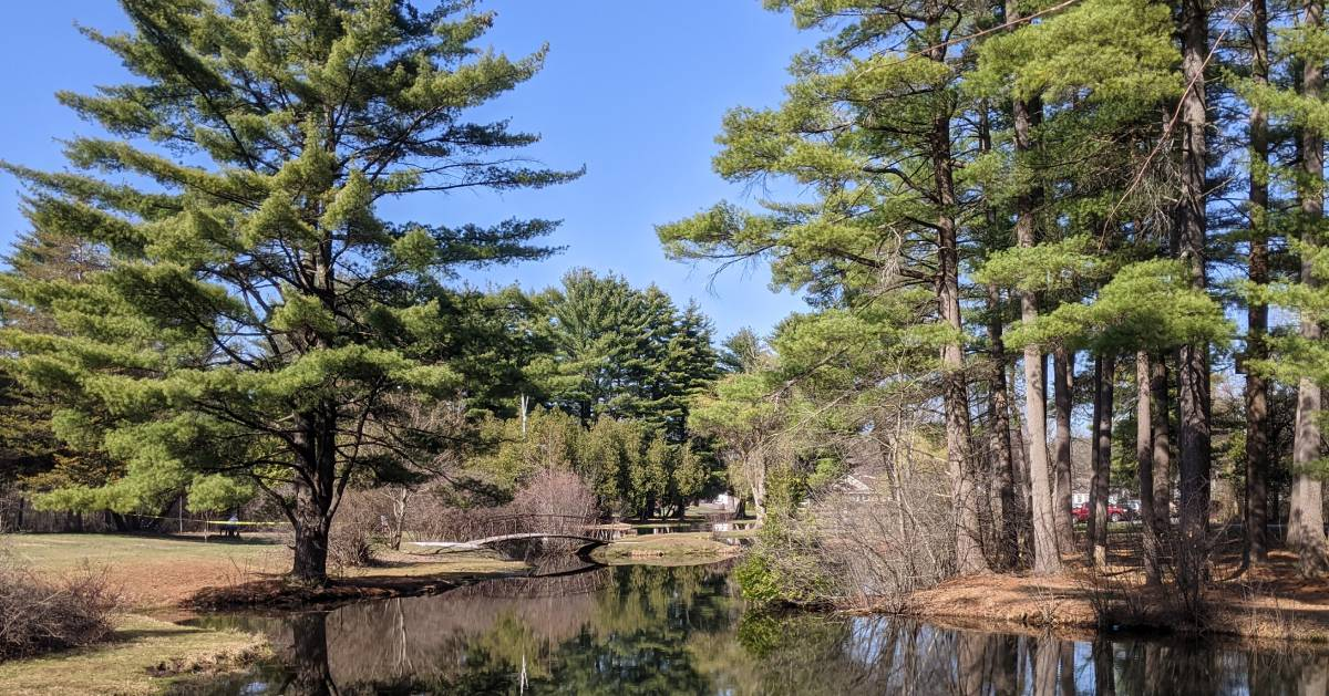 Crandall Pond